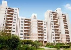 Apartment in Faridabad - Property Sale Purchase in Faridabad NCR and throughout the main cities of India is witnessed to be high development. One of the visual reasons for this increment is a strong foreign investment in real estate in Faridabad NCR.  There are a lot of residential and commercial door are opening for real estate development.