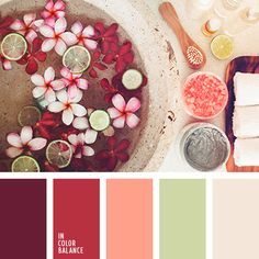 Gorgeous Palette Featuring Shades Of Rich Hibiscus Reds, Himalayan Sea Salt Pink, & Cool Aloe Green & Ivory Sandstone. Color Schemes Colour Palettes, Orange Color Palettes, Red Colour Palette, Color Combinations, Red Color, Pastel Red, Pastel Colors, Colours, Color Swatches
