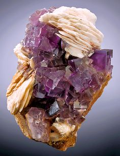 Fluorite with bluish zoning and Barite blades. From Berbes, Berbes Mining Area, Ribadesella, Asturias, Spain. Measures 9 cm by 6.5 cm by 4.5 cm in total size.