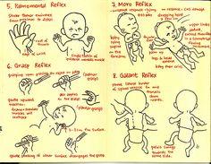 Primitive Reflexes Part 2 of 3
