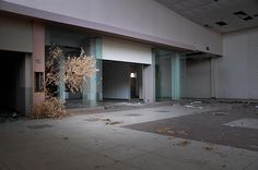 11 | Eerie Photos Of Abandoned Shopping Malls Show The Changing Face Of Suburbia | Co.Exist | ideas + impact