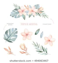 Beautiful soft floral collection with leaves and flowers(tropical leaves,plumeria).Perfect for wedding,invitations. - Buy this stock illustration and explore similar illust Plumeria Flower Tattoos, Tropical Flower Tattoos, Plumeria Flowers, Pastel Flowers, Leaf Flowers, Tattoo Flowers, Tattoo Fleur, Party Tattoos, Arm Tattoos