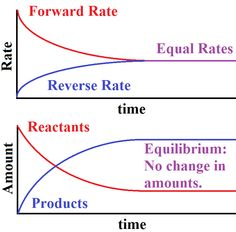 chemical equilibrium - Google Search