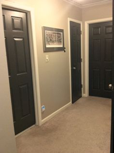the more I see black doors, the more I am tempted to do this. I already have the white woodwork and cream walls