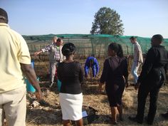 Jabulani Foundations For Farming Training - Morester Child and Youth Care Centre, KZN (South Africa) Home Grown Vegetables, Food For Thought, Farming, South Africa, The Help, Centre, Healthy Living, Youth, Training