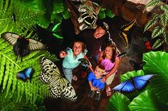 Although Branson is known for its outdoor beauty, you don't have to worry if Mother Nature doesn't cooperate with your travel plans. Museums, live shows and fun shopping options await when your day outdoors gets moved indoors. Check out the attractions and activities that make rainy days enjoyable in Branson, where fun is delivered — regardless of the weather.