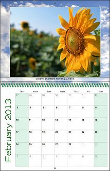 Custom Photo Calendars...Excellent fundraiser, gift or promotional tool.