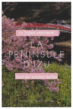 Izu, Cheap Hotels, Best Hotels, Beautiful Places, Loin, Inspiration, Japan Trip, Sunrise