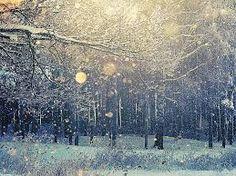Znalezione obrazy dla zapytania falling snow