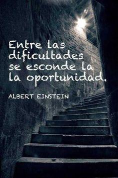 Entre las dificultades se esconde el éxito. Albert Einstein