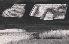 Martin Martinček: Sušenie ľanu:1960 - 1970
