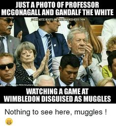 Dame Maggie Smith and Sir Ian McKellen Harry Potter Jokes, Harry Potter Fandom, Harry Potter World, Tolkien, Crossover, Mischief Managed, The Hobbit, Hogwarts, I Laughed