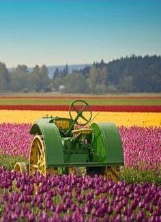 John Deere tractor #tractor #deere