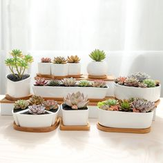 Modern White Ceramic Succulent Planter Pots | Cactus Planter Pots | With Bamboo Wood Tray Saucer Base | Succulent Holder/Bowl $29.50 @ https://thesuperstyle.com $29.50 These ceramic Succulent planters are great creative gift ideas, you might want to surprise a nature lover friend or just treat yourself with them. You can use them as cactus planters , succulent pots or as herb planters. Each ceramic pot is glazed and have holes at the bottom and bamboo drip tray. These decorative bowls will…