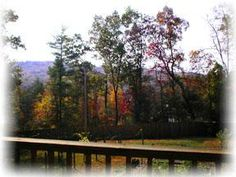 The view from the Garden Room   Mountain Laurel Creek Inn and Spa