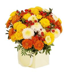 This arrangement contains the following flowers: 3 x Yellow Chrysanthemum 3 x White Chrysanthemum 3 x Orange Chrysanthemum 3 x Rosehips 1 x Cream Giftbag Pistache Greenery Hand-tied by our florists.