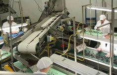 packaged seaweed facility - Google Search