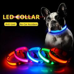 2pcs LED Laser Pointer Flashlighty trainer for cat dog or pets W// 2*AAA Batter