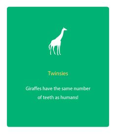dental fun facts 2013 - Google Search Want more business from social media? zackswimsmm.tk