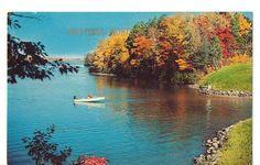 Greetings from Worthington Minnesota  1964 Postcard