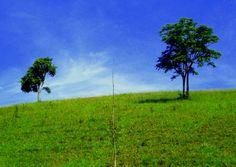 Espaço do ser : Amplitude - Foto: Clarissa Moura