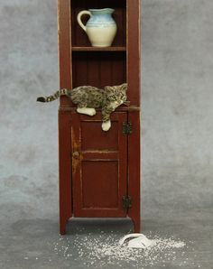 Dollhouse Miniature 1:12 Tabby Kitten Cat by Kerri Pajutee *IGMA OOAK