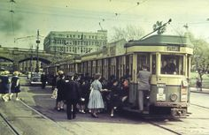 A great Archive tram photo, taken on Eddy Avenue, in Sydney in We wonder if these school children are off for an excursion! Shared by City of Sydney Archives. Australian Photography, Sydney City, Blue Mountain, Historical Pictures, Sydney Australia, Public Transport, Historian, East Coast, Old Photos