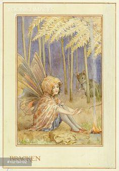 'Bracken Fairy' - Illustration from the book 'The Heath Fairies'
