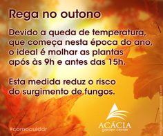 140402-outono-como-cuidar-rega-plantas