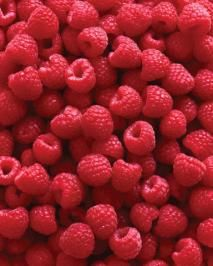 Growing Luscious Raspberries for the whole family.