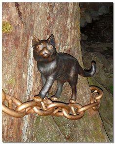 Кот учёный из Самары