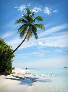 A beach of the Robinson Club Maldives. https://victortravelblog.com/2014/10/21/robinson-club-maldives-coral-reef/