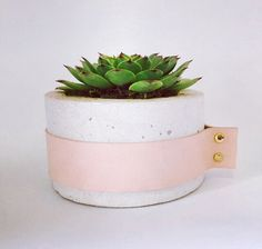Inspired by the gorgeous Latino Eva Mendez, this nude leather clad planter is just so sophisticated and chic, the perfect addition to any modern interior.Ms.Mendez features a concrete base with nude leather band finished with brass fittings, she is available in a range of colours, from marbled grey and white, white, raw concrete, dark grey and charcoal.Diameter: 150mm Height: 100mm Dimensions will vary slightly as it is a handmade item.This sculpture is made of concr...