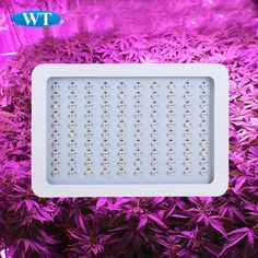 Find More LED Grow Lights Information about 2015 Super New 300W led growth light 100x 3W Chip Full Spectrum 300 Watt Hydroponic Grow Light LED Stock in USA,CA,AU,High Quality led spot light fittings,China led 335 Suppliers, Cheap led ultrasonic from WATTSHINE ELECTRONICS LTD. on Aliexpress.com