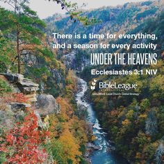 There is a time for everything, and a season for every activity under the heavens. --Ecclesiastes 3:1