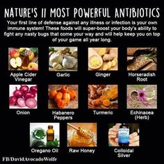 most powerful all-natural antibiotic, the best means to produce and also raise our body immune system and also fight versus virus Herbal Remedies, Natural Remedies, Garlic Supplements, Natural Antibiotics, Crohns, Most Powerful, Food Facts, Get Healthy, Healthy Habits