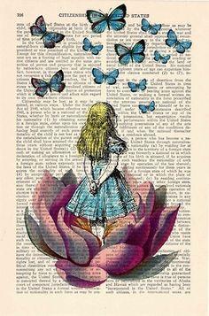 Wonderlander