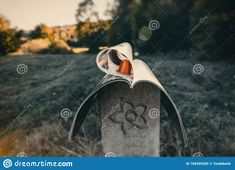 Photo about Autumn landscape with coffee capsule between leaves of newspaper. Image of texture, newspaper, park - 160399205