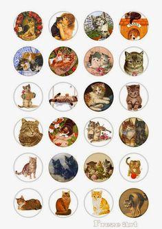 papers.quenalbertini: Cat Scraps