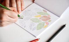 COLOURING BOOK  Nature inspired colour in by emporiumJULIUM
