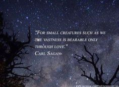 """""""For small creatures such as we, the vastness is bearable only through love."""" Carl Sagan"""