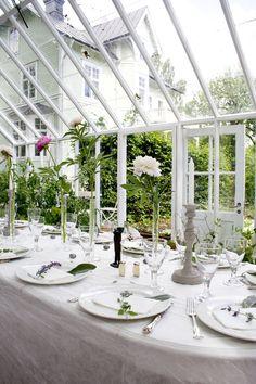 Middag med Tove Admans betongljusstakar http://www.swedengreenhouse.se/galleri.html?album=vaxthus---21-kvm-637