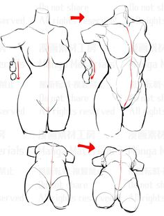 Twitter Drawing Skills, Drawing Techniques, Drawing Tips, Anatomy Sketches, Anatomy Drawing, Anatomy Art, Manga Tutorial, Anatomy Tutorial, Art Tutorials
