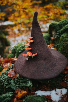 Witch hat with mushrooms amanita muscaria forest wizard hat felted hat from wool Halloween costume witch costume larp hat cosplay - wizard - Forest Drawing, Forest Painting, Forest Art, Dark Forest, Magical Forest, Witch Photos, Forest Photography, Ocean Photography, Photography Tips