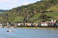 The Rhine (Rhein) is the twelfth longest river in Europe. Kaub is part of the municipality Loreley. It is located on the right bank of the Rhine. The trade mainly consists of the wines of the district.