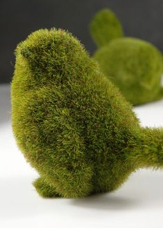 Love these cuties! Make Them Wonder: Mossy Spring Decor