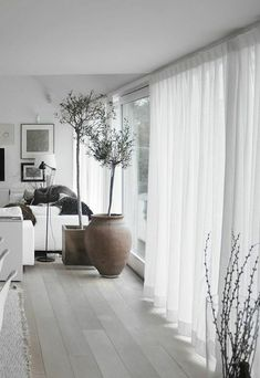 Raffrollo My Home Cellino Transparent Raffrollos Gardinen Gardine - Gardinen Für Wohnzimmer - Hause Deko Ideen : Decoranddesign - Hause Deko Ideen : Decoranddesign
