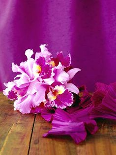 Orchids are expensive, elegant, dainty, and rare. There are over 800 types of orchids, and they can be found pretty much everywhere in the world. Blue Purple Wedding, Floral Wedding, Wedding Bouquets, Wedding Flowers, Bridesmaid Bouquets, Purple Flower Names, Little Flowers, Beautiful Flowers, Purple Orchids