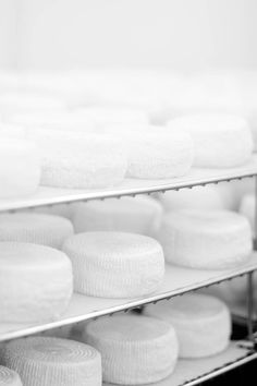 Rikki Snyder Photography | Blog | Let's make some cheese...