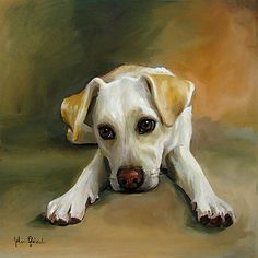 Pet Portraits Paintings Oil on Canvas - Mosby the Yellow Lab Mix www.juliepfirsch.com
